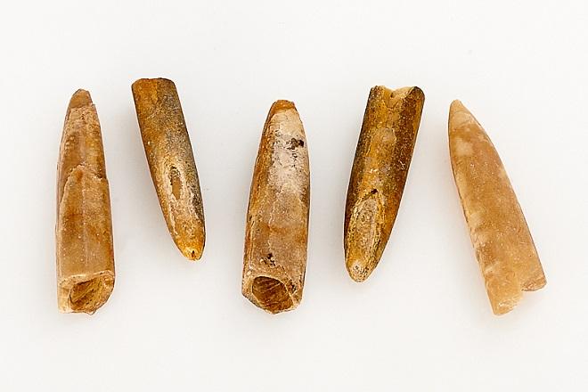 Желтый чертов палец