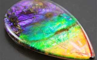 АММОЛИТ — радуга древнего моллюска