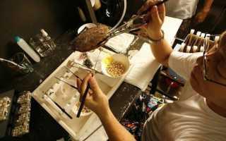 50 оттенков перламутра: как отличить морской жемчуг от речного